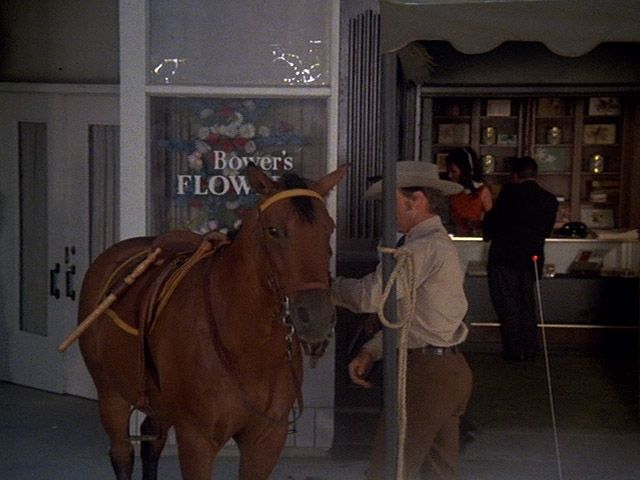 Horse Stealing on Fifth Avenue
