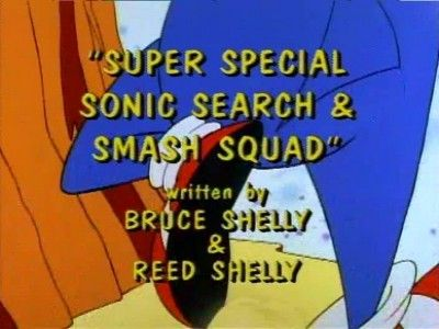 The Super Special Sonic Search And Smash Squad!