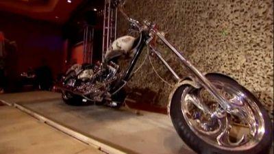 Iraq Star Foundation Bike