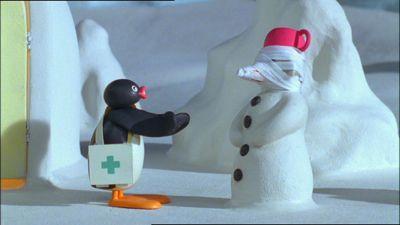 Pingu Wraps Up