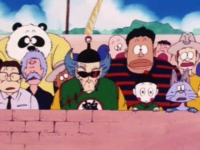 Final Match: Goku vs. Tien Shinhan
