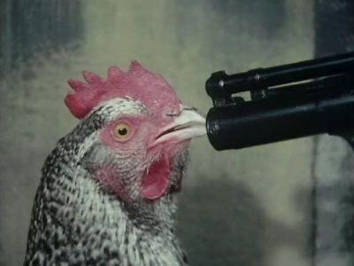 Say Little Hen...