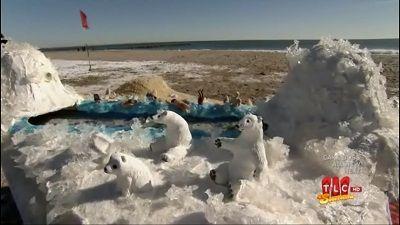 Peppermint & a Polar Bear Plunge