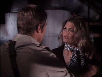 The Return of the Bionic Woman (2)