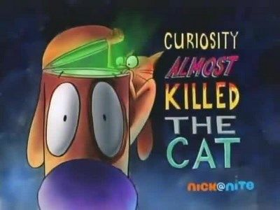 Curiousity Almost Killed The Cat