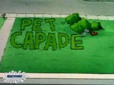 Doug's Pet Capades
