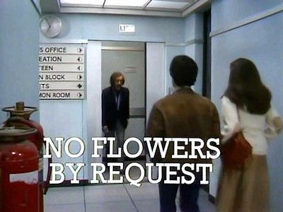 No Flowers by Request