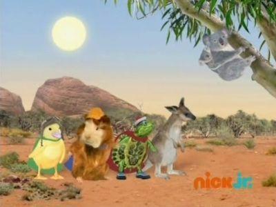 Save the Kangaroo!