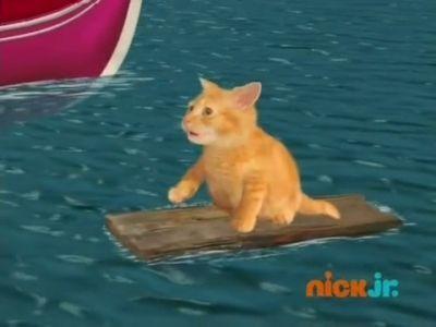Save the Kitten!