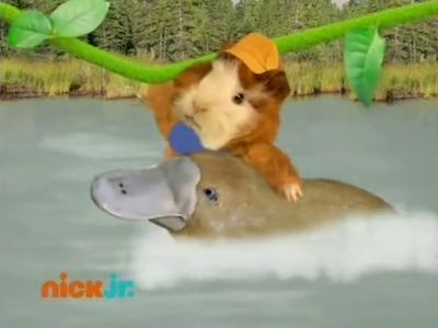Save the Platypus!