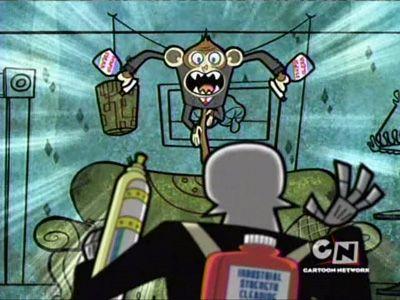 Hurter Monkey