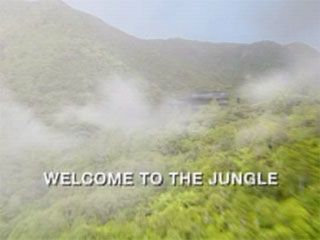 Welcome to the Jungle (1)