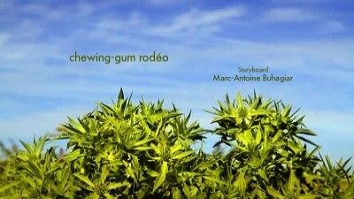 chewing-gum rodeo