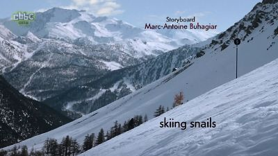 skiing snails / black slope for gastropod skiers