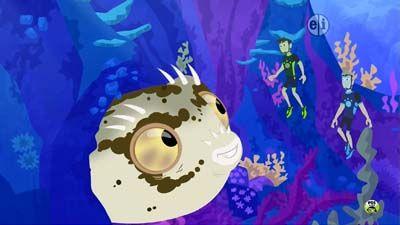 Blowfish Blowout