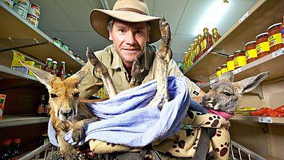 Kangaroo Dundee & Other Animals (1)