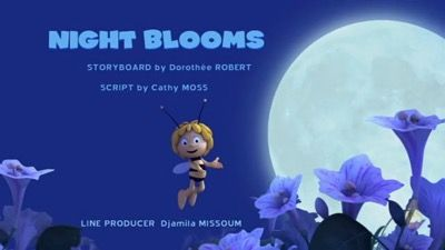 Night Blooms