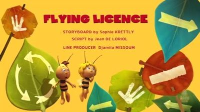 Flying License