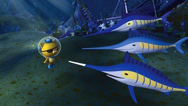 The Swashbuckling Swordfish