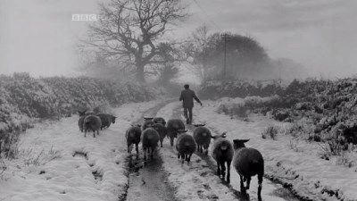 James Ravilious: A World in Photographs