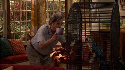 Giving the Bird