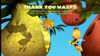 Thank You Wasps