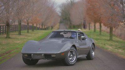 Corvette Sinkhole Adventure in a 1975 Stingray!