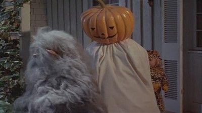 A Safe and Sane Halloween