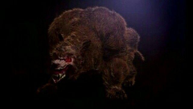 Wild Bill's Bear Beast