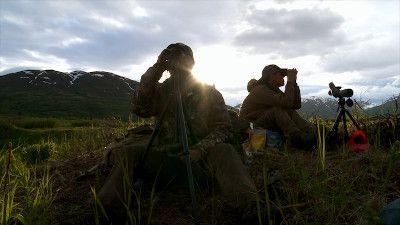 Alaska Bear Hunt (2)