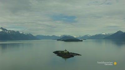 Alaska's Call of the Wild