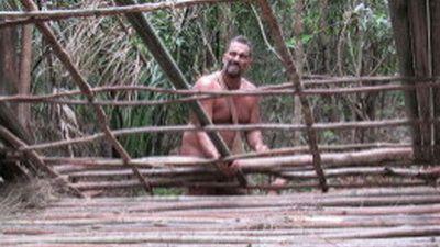 40 Days Jungle Rich