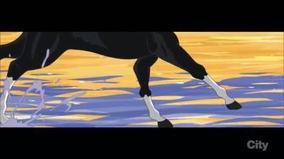 The Horse Rider-er