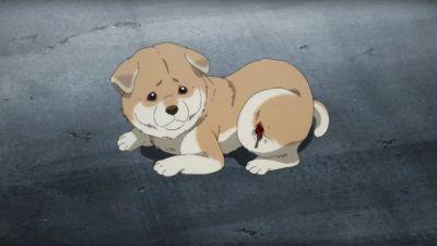 Dogged Runner