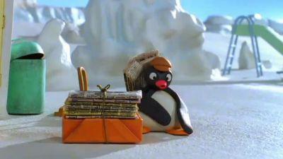 Pingu and the Daily Igloo