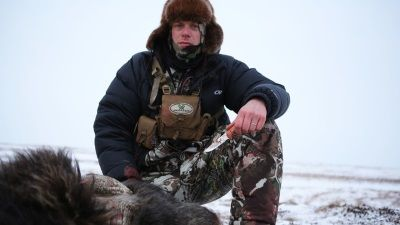 The Coldest Hunt: Nunivak Island Muskox
