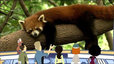 Red Panda Rescue