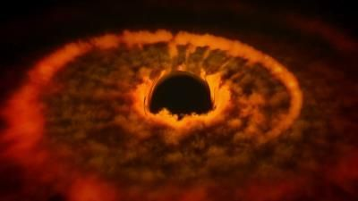 Black Holes: The Einstein Prophecy