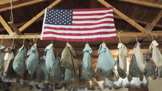 Daniel Boone's Wilderness Trail
