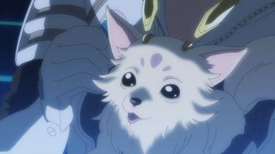 My Cute Puppy / Do Not Disturb
