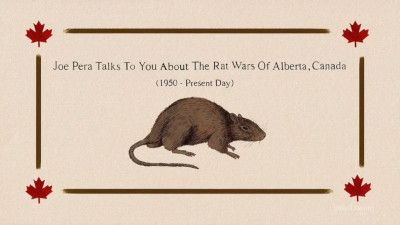 Joe Pera Talks To You About The Rat Wars of Alberta, Canada, 1950 - Present Day
