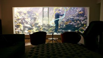 Chicago Cubs Cave, Aquarium House, The Love Boat