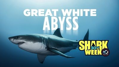 Great White Abyss