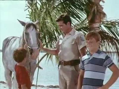 Flipper and the Horse Thieves