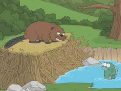 Beavers: Assholes of the Forest