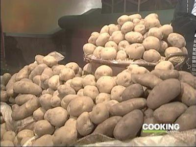 Michiba vs Lin Kunbi (Potato)