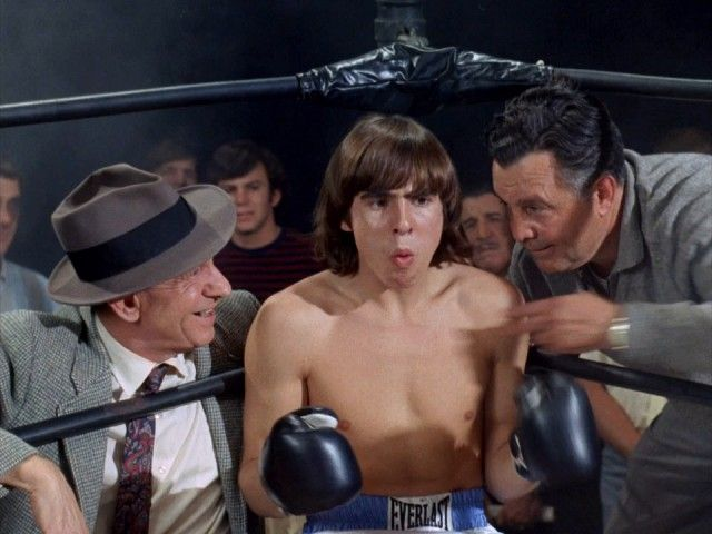 The Monkees in the Ring