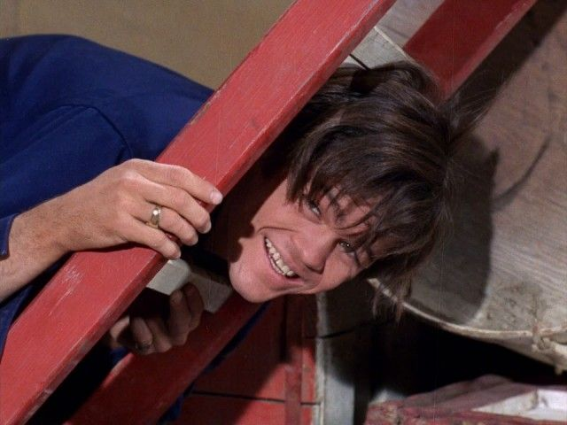 The Monkees at the Circus