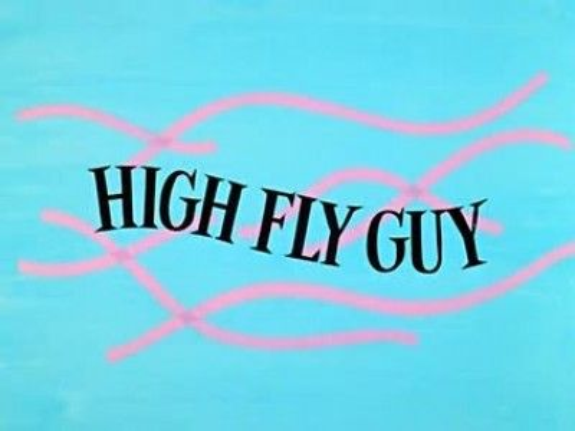 High Fly Guy