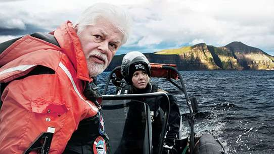 Whale Wars: Viking Shores